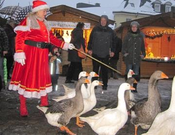 Gänse am Weihnachtsmarkt in Gumersbach