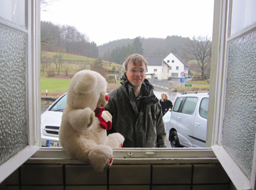 Ein Bär im Fenster