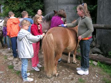 Ponyhof Vogt in Kierspe